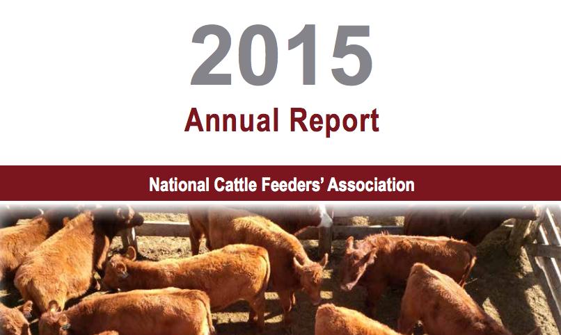 NCFA_2015_Annual_Report